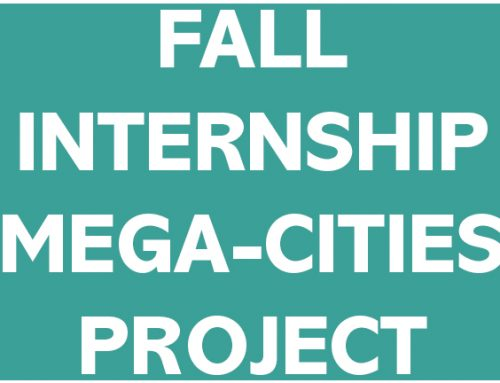 CALL FOR APPLICATIONS  2019 PAID FALL INTERNSHIP Mega-Cities Project